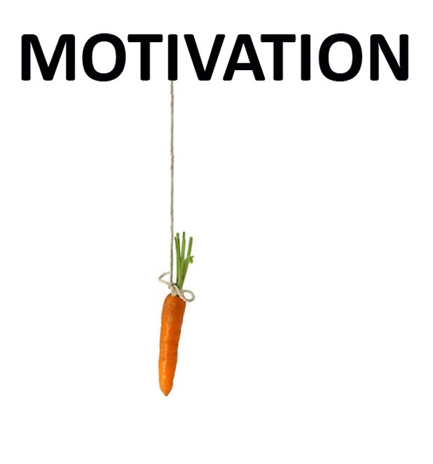 The best employees are self-motivated by procedures. They focus on peak performance.